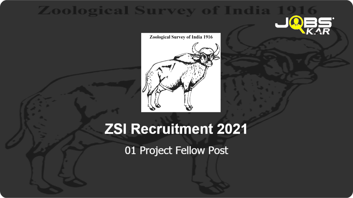 ZSI Recruitment 2021: Apply for Project Fellow Post