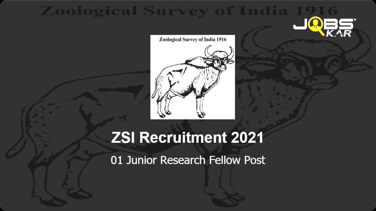 ZSI Recruitment 2021: Apply Online for Junior Research Fellow Post